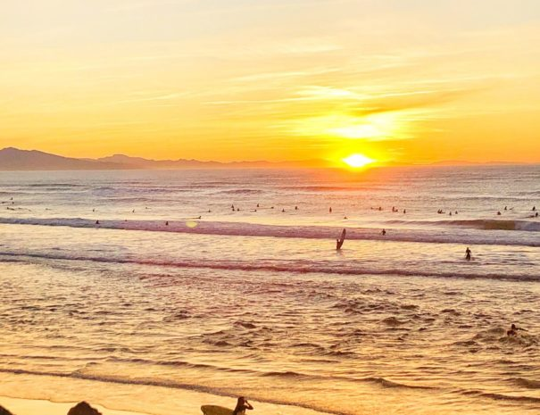Surf Spirit Tour - Tour du Pays Basque insolite et 100% Culture Surf