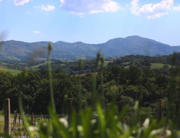 Vue Sur les montagnes du Pays Basque Txiki Combi