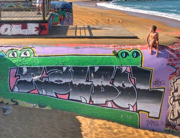 Découverte street Art Anglet Biarritz en Combi VW