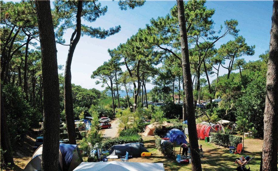 Bienvenue au Camping du Pavillon Royal | Partenaire de Txiki Combi Pays Basque