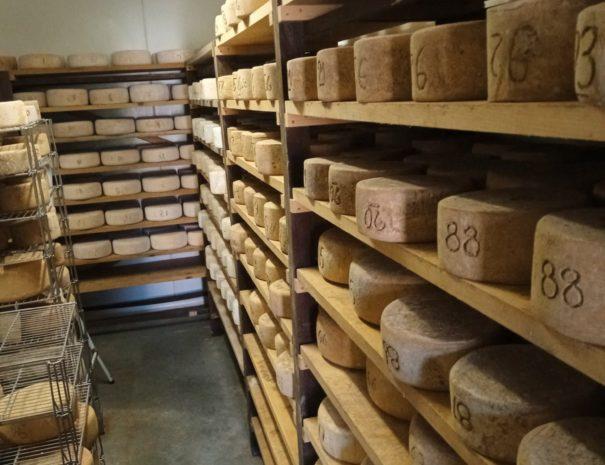 A la découverte de l'Ossau Iraty fromage emblématique du Pays Basque